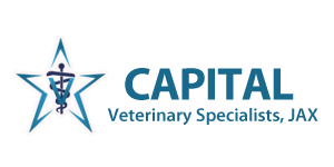 capital-logo-web
