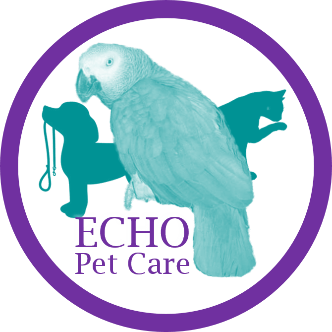 echo-logo-png