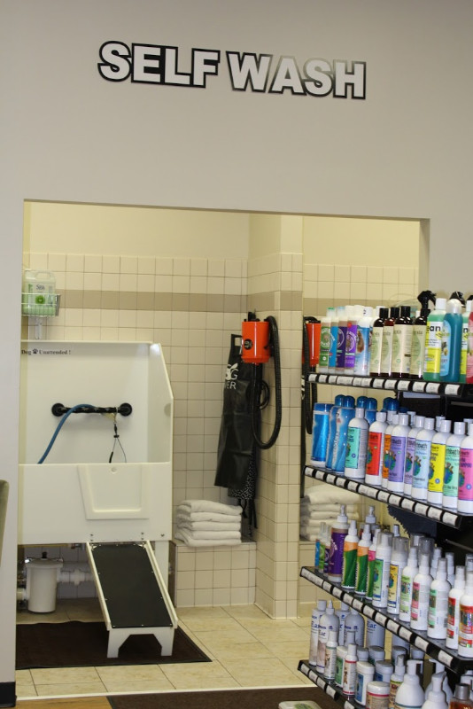 Earthwise pet jax beach unleash jacksonville our full stocked self wash area provides everything you need to bathe your own pet without any of the mess at home stop by and see us today solutioingenieria Choice Image