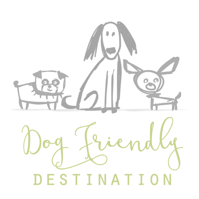 dog-friendly-destination