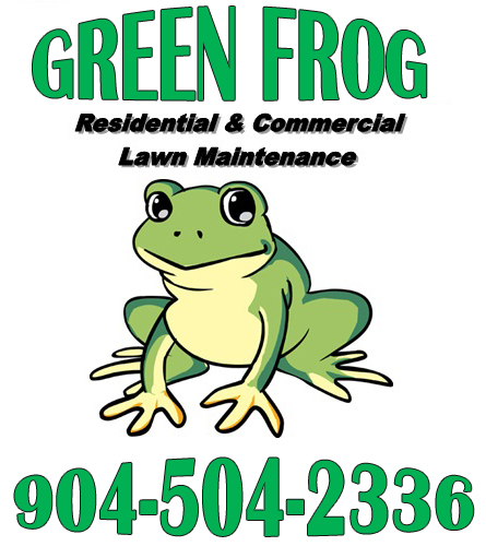 GreenFrog-copy